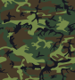 Camouflage / Army Print