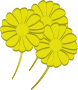 yellow flowers Thumbnail