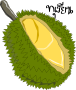Durian,Thai Fruit