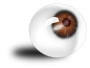 Eyeball brown />
