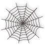Halloween Spider Web Icon