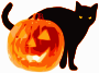 Cat and Jack-O-Lantern />